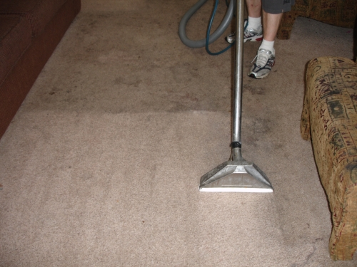 05 O.G PROFESSIONAL CARPET CARE