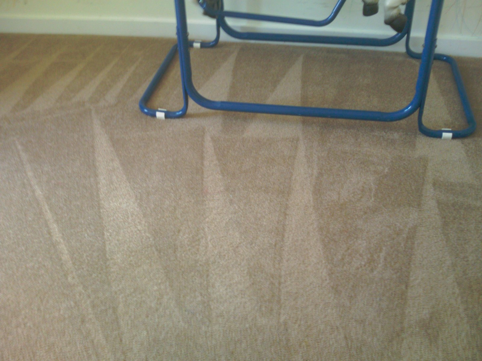 carpetcleaning-june-079
