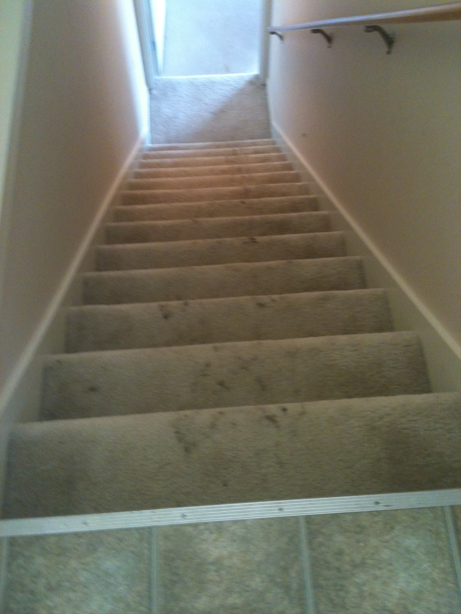 img_0141 Stairway carpet cleaning grand rapids
