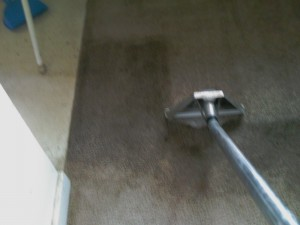Steam Cleaning Carpet Cleaning Grand Rapids