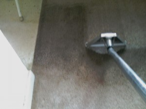 Commercial Steam Cleaning grand rapids. Grand Rapids Commercial Carpet Cleaning