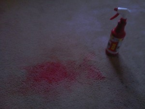 Commercial Stain Removal Grand Rapids